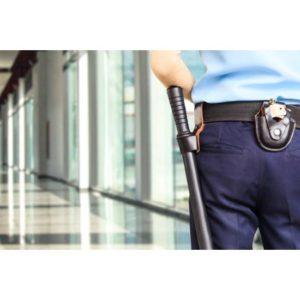 Experto-Videovigilancia-Proteccion-Seguridad-Online
