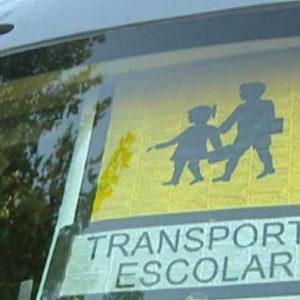 curso de acompañante de transporte escolar online