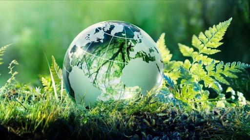curso de turismo sostenible