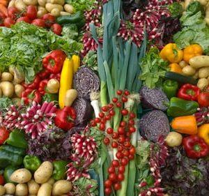 dieta vegana y veganismo