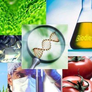 curso de biotecnologia alimentaria