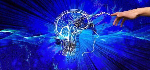 curso de neurmarketing